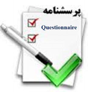پرسشنامه BWM